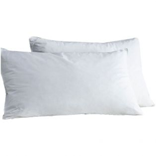 Olena Duck-Feather Pillow, Set of Two